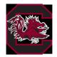 S Carolina_logo